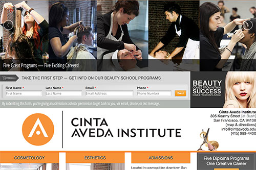 Cinta Aveda Beauty Institute Home Page